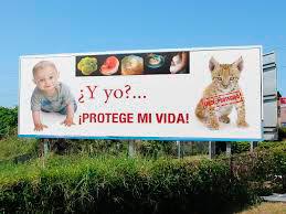 Vallas Córdoba